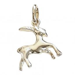 Pendentif Astrologique zodiaque Capricorne en argent 925°/00 + chaine