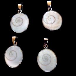 Pendentif oeil de Sainte Lucie Shiva coquillage + chaine 2cm diam env